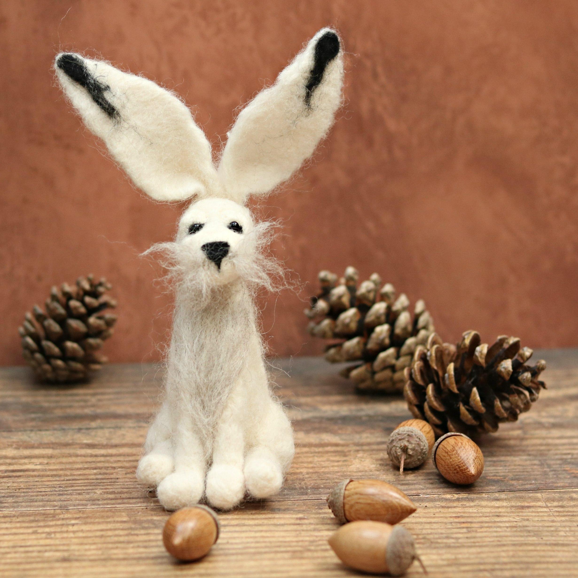 *NEW* Needle Felting Kit Limited Edition Kit Improvers Valentina Hare
