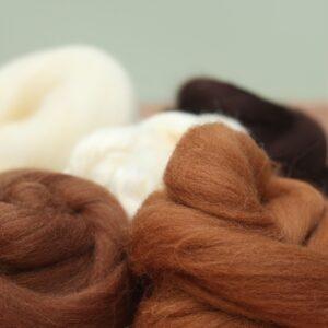 Wool tops/roving